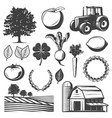 vintage natural elements set vector image vector image