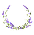 wreath lavender provence region france the vector image vector image