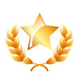 star award laurel premium winner emblem vector image