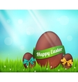 chocolate easter eggs on green vector image vector image