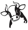 head of cartoon cow vector image