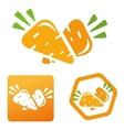 icon vitamins carrots vector image vector image