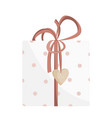 valentines day parcel isolated on white vector image vector image