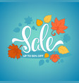 autumn bright fall leaves and lettering vector image vector image