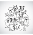 Group dogs black and white isolate vector image