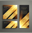 luxury invitation banner card template design vector image vector image
