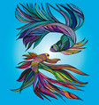 two small fishes yin-yang hand-drawn vector image vector image