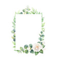watercolor frame with eucalyptus leaves and vector image vector image