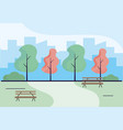 wooden park benches craft vector image vector image