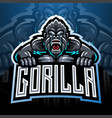 angry gorilla mascot logo vector image vector image