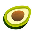 avocado icon food with healthy fats and oils vector image vector image
