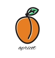 Doodle apricot Hand-drawn object isolated on white vector image