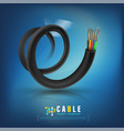 fiber optic cable vector image vector image
