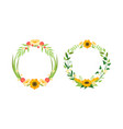 flower round frame with copy space set floral vector image