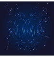 Gemini zodiac whith glitter star vector image