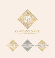 luxury logo template vector image vector image