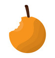 orange fresh food bitted fruit vector image