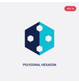 two color polygonal hexagon icon from geometry vector image vector image