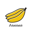 Doodle banana Hand-drawn object isolated on white vector image