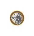 American Buffalo Bison Head Circle Retro vector image vector image