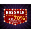 Big Sale Banner and Best Offer vector image vector image