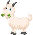 Cartoon goat eating grass vector image vector image