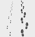 Footprints 2 vector image vector image