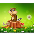 Happy little chipmunk holding nut vector image vector image