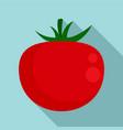 organic tomato icon flat style vector image vector image