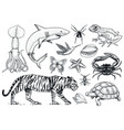set of animals reptile and amphibian mammal and vector image vector image