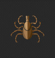tick borne diseases icon logo design vector image vector image