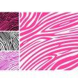 zebra print background vector image vector image