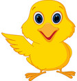 happy chick cartoon vector image