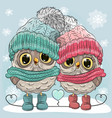 cute owls boy and girl vector image vector image