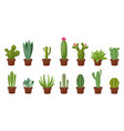 horizontal banner set of desert room green cactus vector image