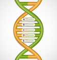 Infographics in the DNA helix form design element vector image vector image