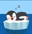 penguin sleep on an ice floe vector image vector image