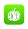 pumpkin icon green vector image vector image