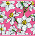 seamless pattern with flowers of narcissus vector image vector image