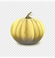 stock pumpkin isolated on a vector image vector image