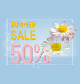 summer sale banner with daisy flowers vector image
