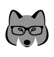 wolf face in glasses front vector image vector image