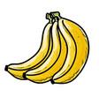 banana fresh and healthy fruit vector image vector image