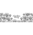 daisy flower banner drawing hand drawn vector image vector image
