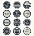 quality retro vintage badges collection vector image vector image
