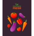 vegetables fresh vector image vector image
