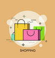 colorful paper shopping bags with handles concept vector image vector image
