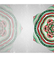 Colorfull ornamet snowlake vector image