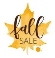 Fall sale hand written inscription vector image vector image