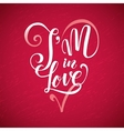 I an in LOVE Happy Valentines Day red lettering vector image